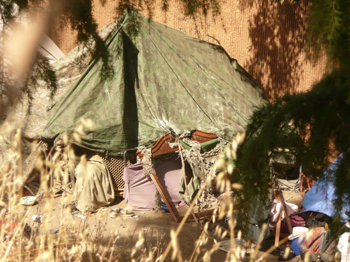 olive green tent at ahomeless encampnent behind the Pinehurst neighborhood in San Jose, California' October 2017 Camping Camping Life Pinehurst Neighborhood Weather Adult Bum Day Environmental Issues Homeless Homelessness  Lifestyles Makeshift Home Men Nature Nomads Olive Green One Person Outdoors People Real People Transients Tree Vagrancy Weeds Women