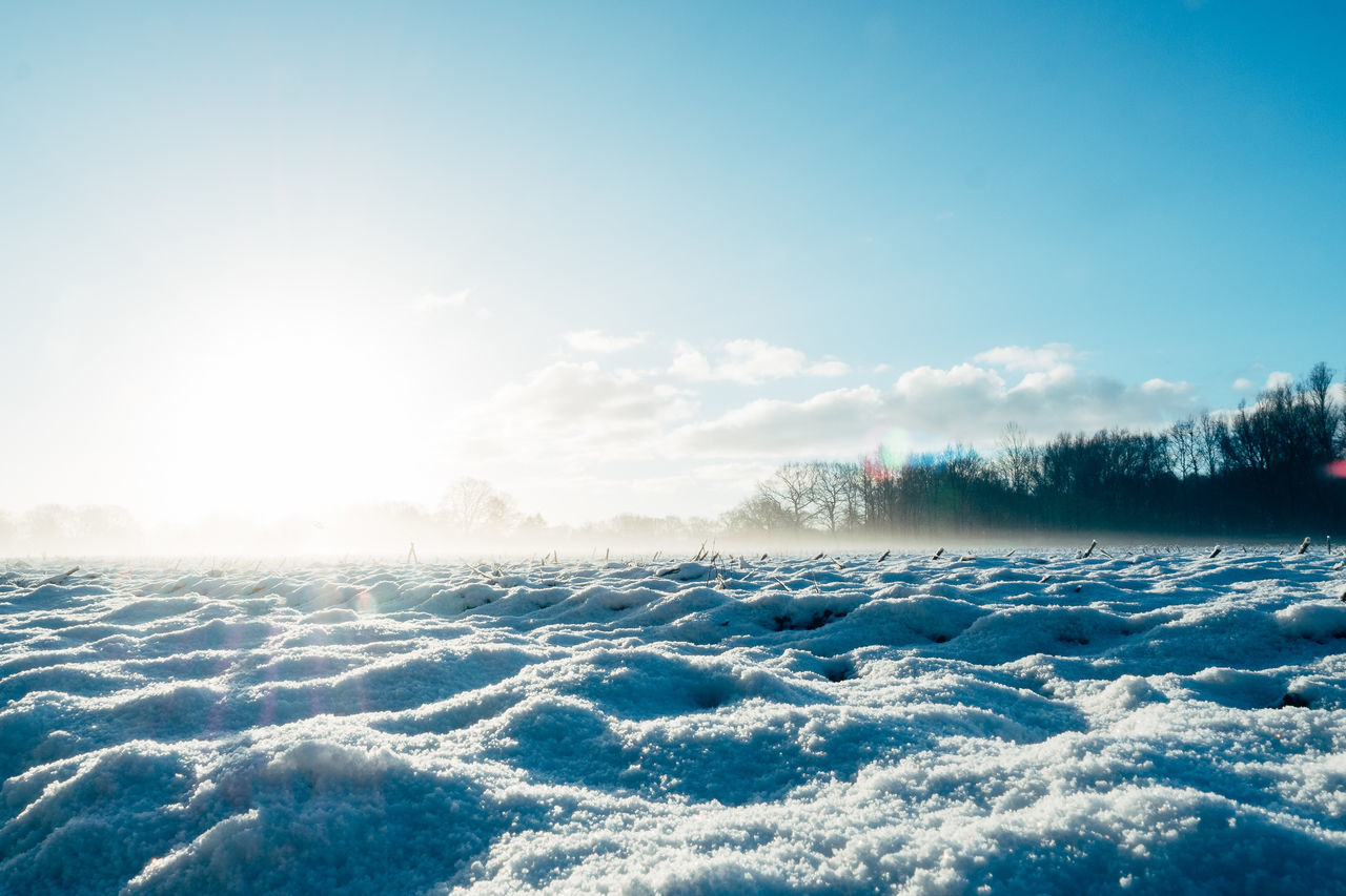 North Germany | Winter Beauty Blue Cold Temperature Day Freshness Ice Landscape Mountain Nature No People Outdoors Polar Climate Scenics Sky Snow Winter