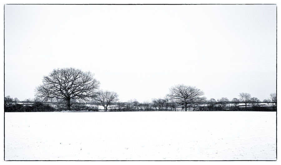Snow covered rural Oxfordshire countryside in winter. Bare Branches Clear Sky Copy Space Snow ❄ Winter Winterscapes Wintertime `ploughed Fields Bare Tree Bare Trees Fields Hedgerow Landscape No People Oxfordshire Rurual Scene Snow Snowfall Snowing Winter Trees Winter Wonderland