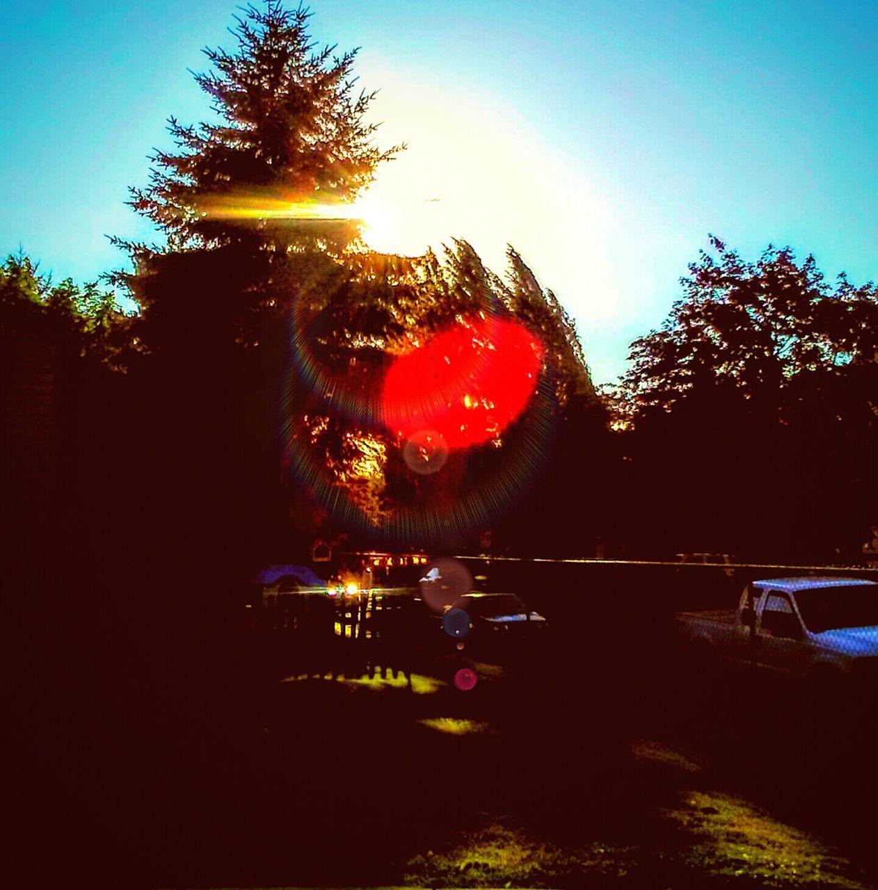 tree, car, sunset, speed, illuminated, transportation, outdoors, no people, sky, land vehicle, night, nature