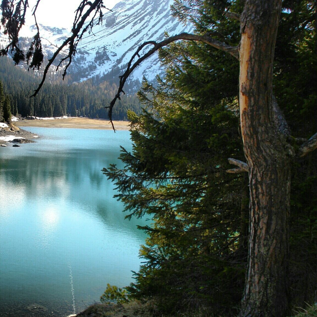 Paradise Taking Photos Lake Turkuaz