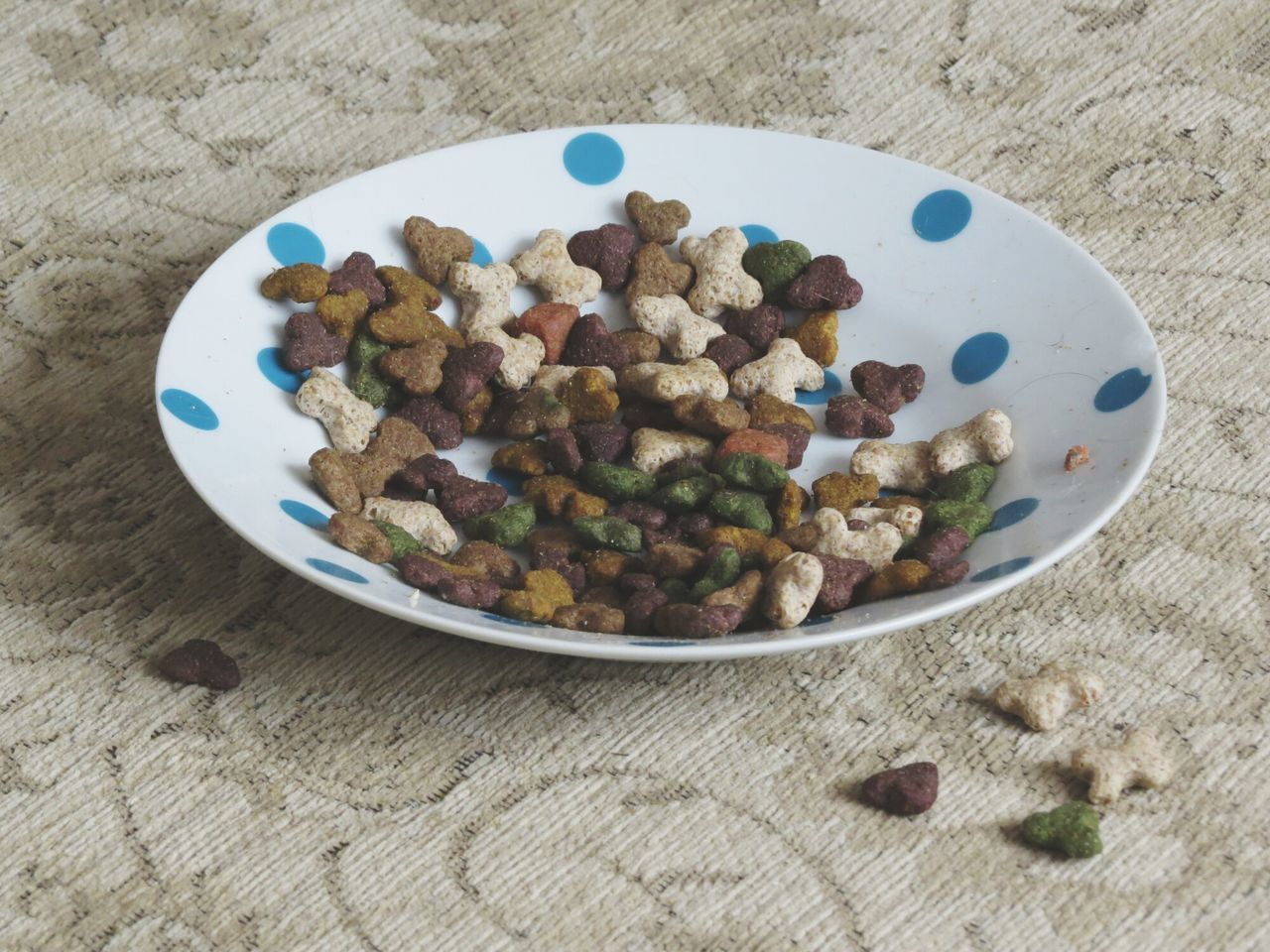 Dog Food Kibble Bright Colours Bright Colors Contrast Shadow Dog Food And Drink High Angle View Indoors  Freshness Food Healthy Eating Large Group Of Objects Day Multi Colored No People Vegetarian Food