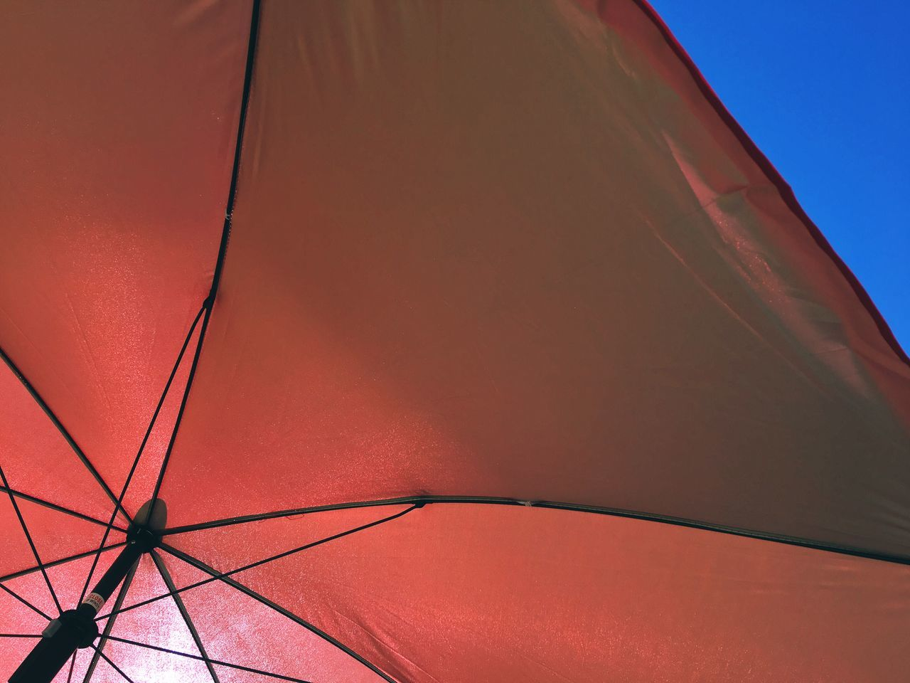Low Angle View Of Red Parasol Back Lit Beach Umbrella Close-up Color Image Day Horizontal Low Angle View Nature No People Outdoors Parasol Photography Protection Red Single Object Sky Summer Sunlight Sunshade