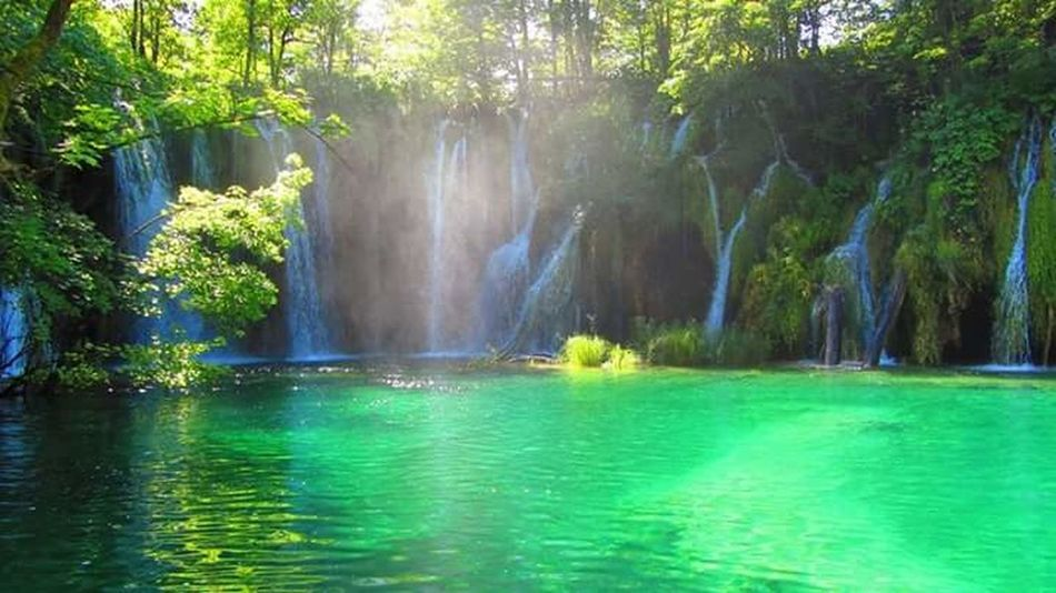 2 years ago... Waterfront Tranquility Tranquil Scene Beauty In Nature WoodLand Plitvicka Jezera Plitvicer Seen Magic Croatia Waterfall National Park Collection Summer ☀ National Park Croatia ♡ Turquoise By Motorola Pond Water_collection Plitvice Lakes National Park Plitvicka Jezera Nacionalni Park Non-urban Scene Flowing Water Rock Formation Cliff Green Color Water Tree