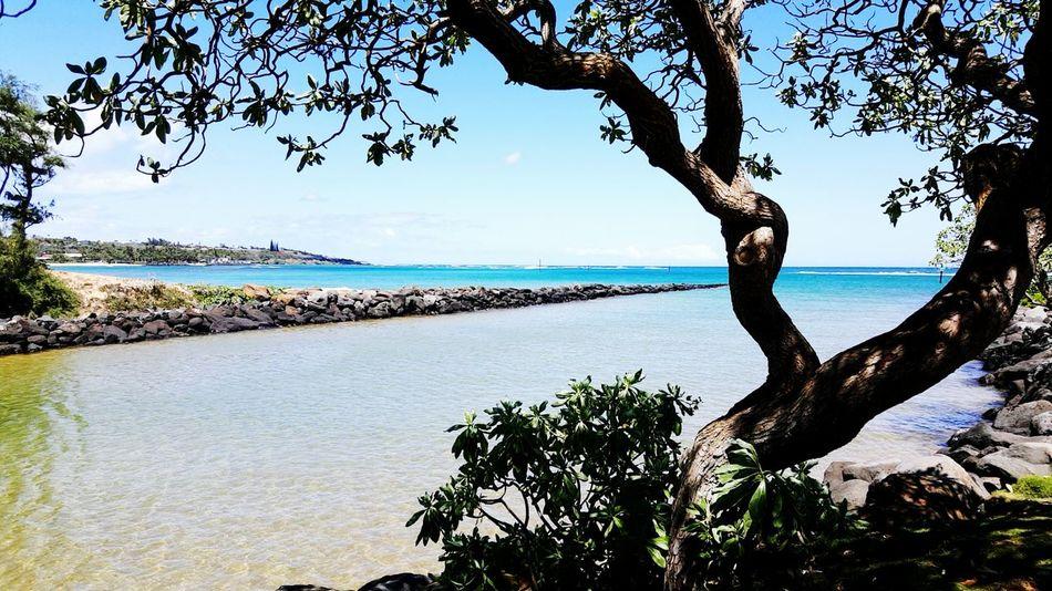 Here Belongs To Me Luckywelivehawaii Lifes A Beach Kauai♡