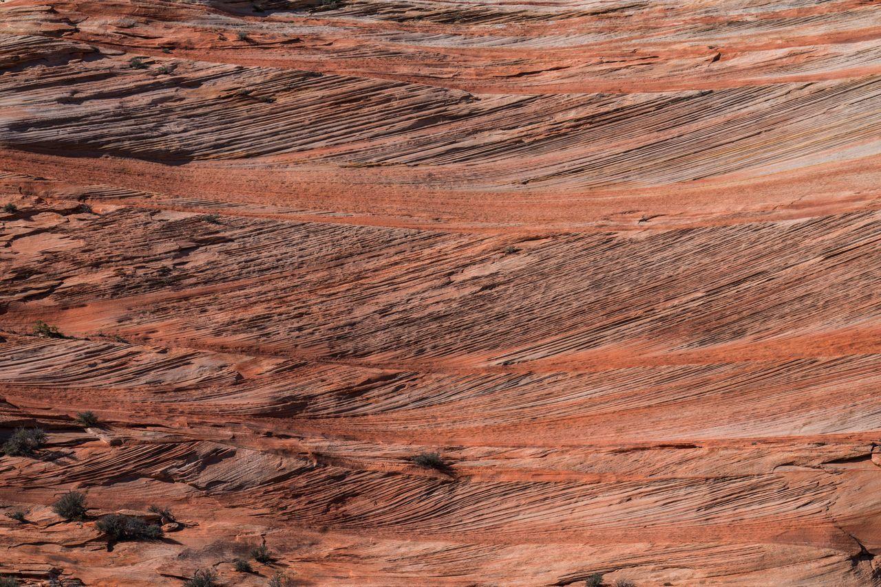 Full Frame Shot Of Red Pattern