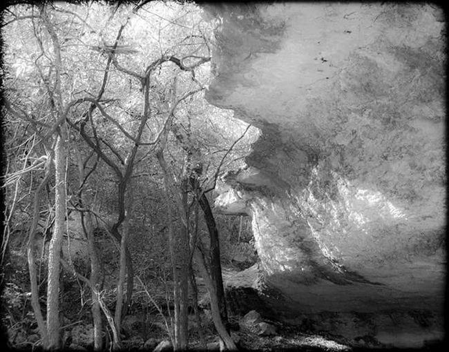 The Great Outdoors - 2015 EyeEm Awards Nature On Your Doorstep Texas State Park  Tonkawa Cave Caves Trees Black & White B&w Photography
