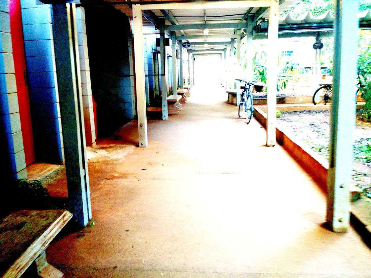 Sunlight Day No People Corridor Universiry Simple Normal Day Common Bicicle