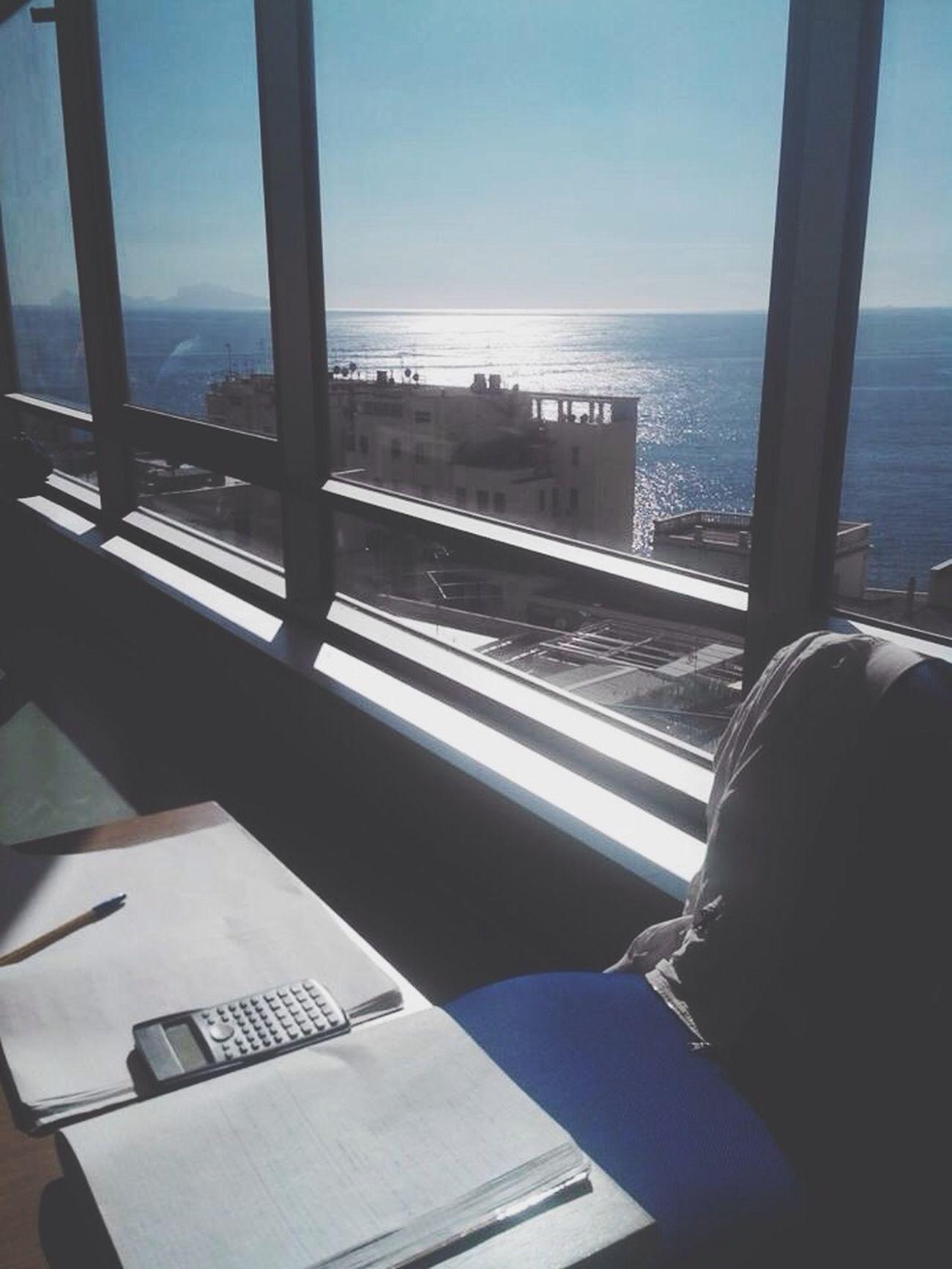 Studying Guy