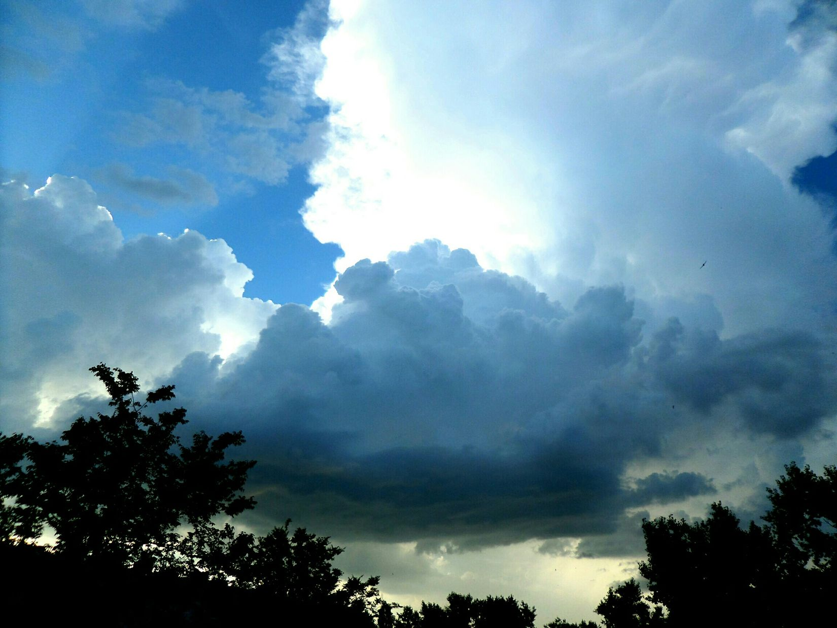Photo Russia Summer Forest Sky Light Shadow Kropotkin Cloud - Sky