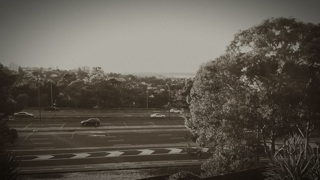Good morning north sydney! Taking Photos Hello World Enjoying Life Relaxing Hanging Out