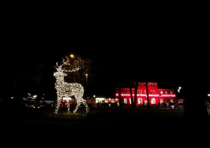 Alingsås Lights Exhibition Celebrate The Moment Sweden Nature Peaceful Coldweather