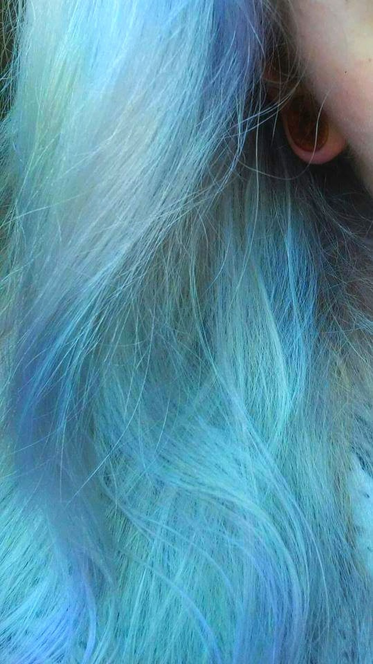 Longhair Coloredhair Blue Blue Hair Pastel Pastel Colors Haircolor Hairstyle Plug Plugs Girlswithplugs Like4like Picoftheday Photooftheday Girl Woman Saturday Weekend Alternative Girl Metalhead One Person Dyed Hair Only Women Human Hair Colorful