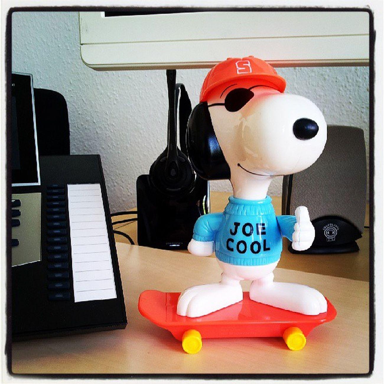 Mein Bürokollege sorgt für die tägliche Dosis Motivation. :)