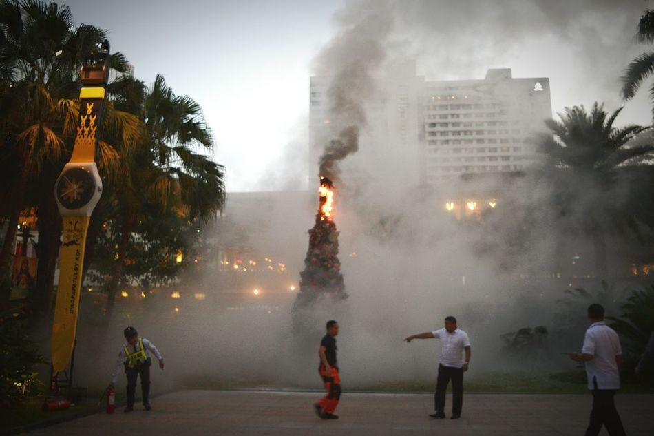 Christmas Tree On Fire Christmas Tree Smoke Fire December