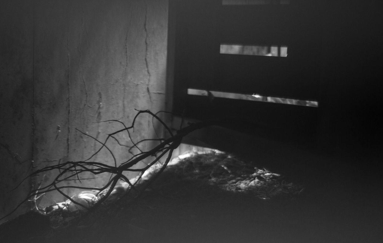 indoors, no people, night, illuminated, architecture
