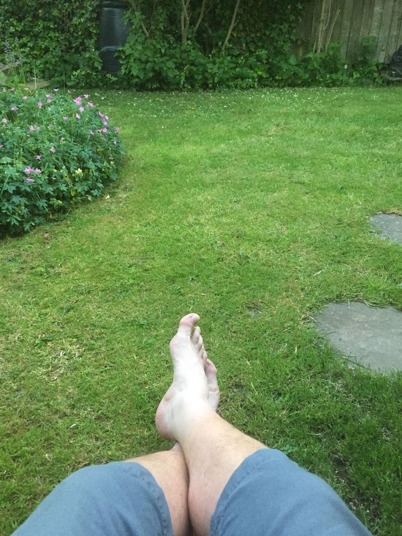 In my garden 😀