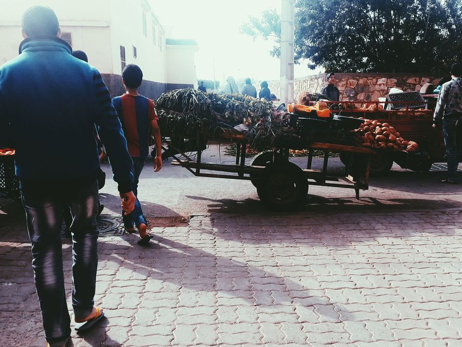 Horse Cart Day Outdoors Morocco 🇲🇦 Donkey Occupation People Traditional Marketplace Masjid سوق