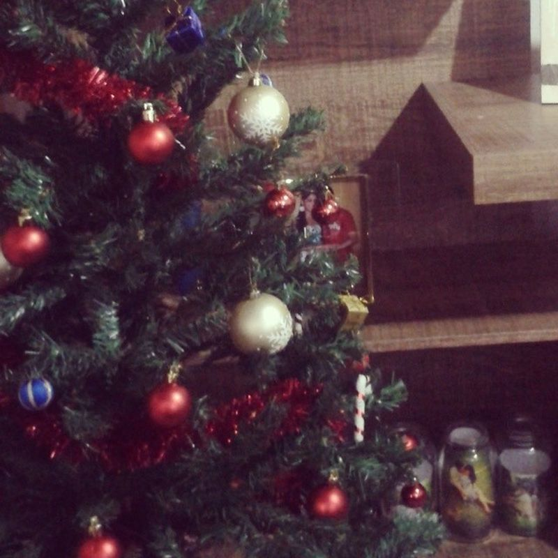 O primeiro Natal da nossa nova família...nosso lar cada dia mais nosso Natalemfamilia Felicidadeadois