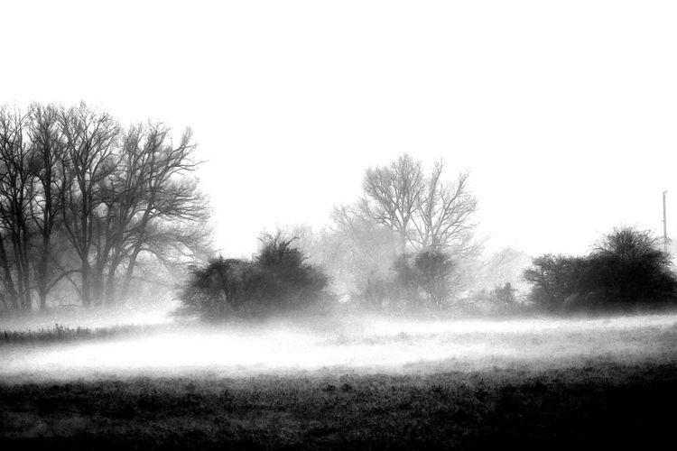 Fog Foggy Morning Foggy Mist Misty Eyem Misty Day Landscape #Nature #photography Landscape_photography Silhouette Light And Shadow