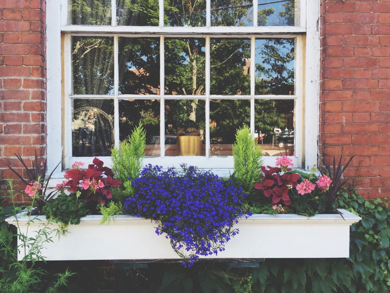 Flowers Garden Gardening Window Box Flower Box Planter Purple Flowers Summer Summer Flowers Brick Building Brick Window New England  Window Panes Old Window Colonial Home Reflection In The Window Glass Architectual Detail