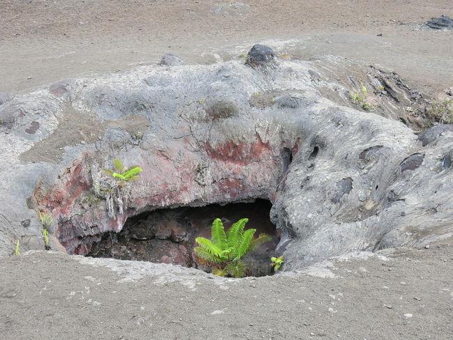 Day Hawaii Hawaii Volcano Trail Hawaii Volcanoes National Park Hilo  Hilo Hawaii Light Stone Nature No People Outdoors Rock Rock - Object Great Outdoors - 2016 EyeEm Awards Nature's Diversities
