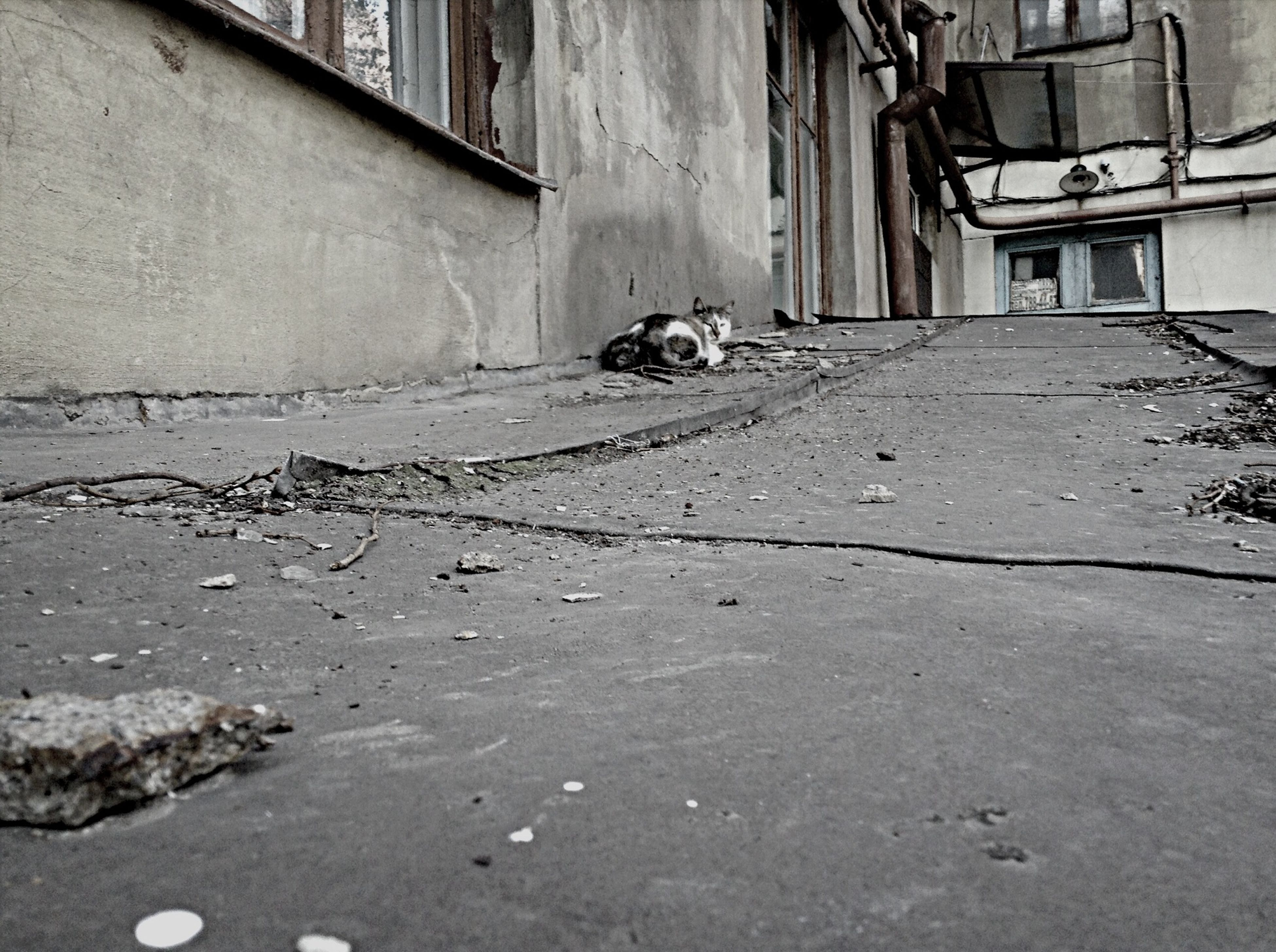 built structure, architecture, building exterior, house, street, the way forward, transportation, abandoned, building, day, wall - building feature, no people, outdoors, old, cobblestone, door, residential structure, surface level, empty, road