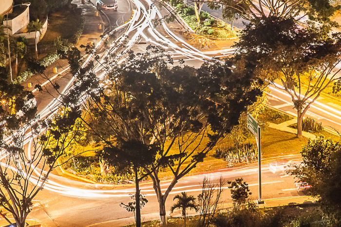 Tree Transportation City Outdoors No People Nature Sunset Illuminated Night The Street Photographer - 2017 EyeEm Awards