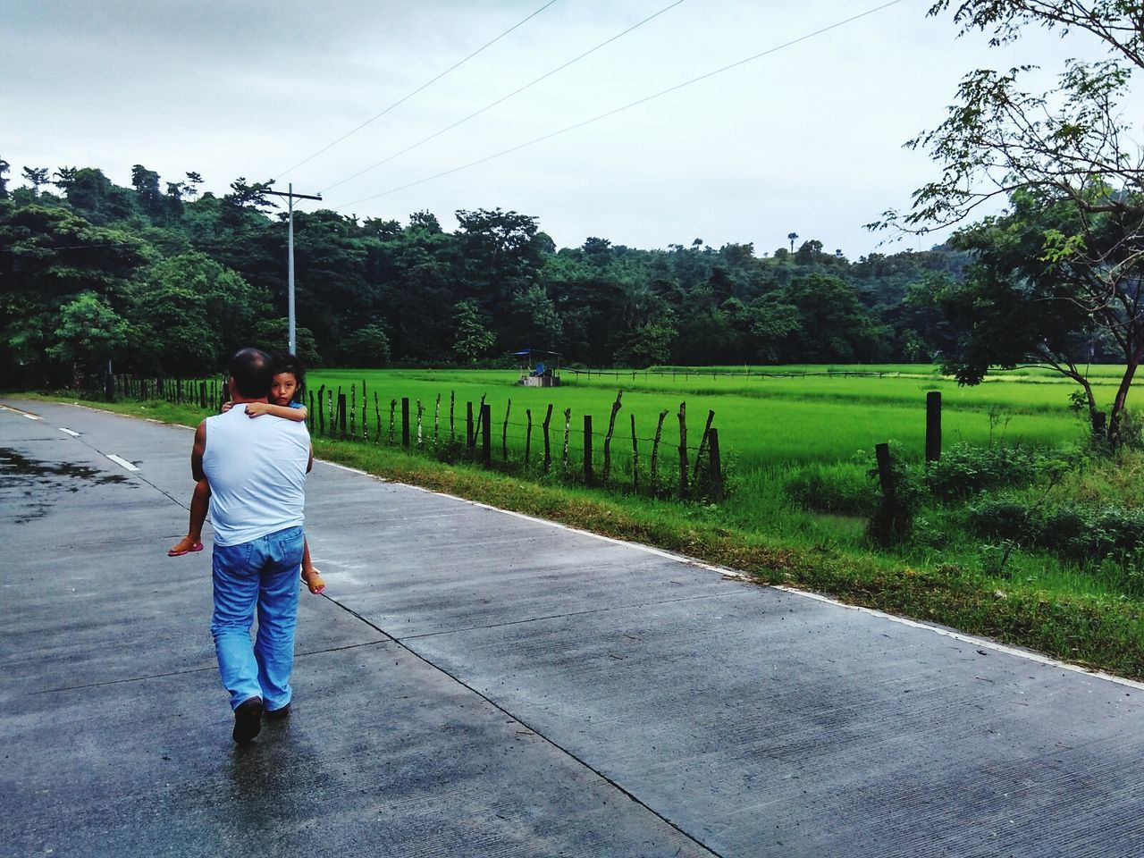 tree, full length, real people, rear view, one person, day, casual clothing, outdoors, nature, walking, sky, road, growth, men, beauty in nature, grass, people