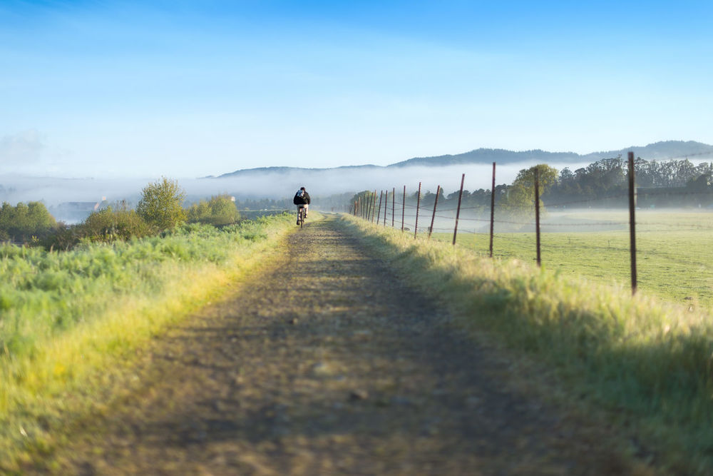 Man riding bike on path with green grass and blue skies Bicycle Bicycling Bike Ride Bike Rides Country Living Country Road Countryside EyeEm Best Shots EyeEm Gallery Farm Farm Life Fog Rolling In Foggy Morning Fortuna Riverwalk Showcase April Long Goodbye