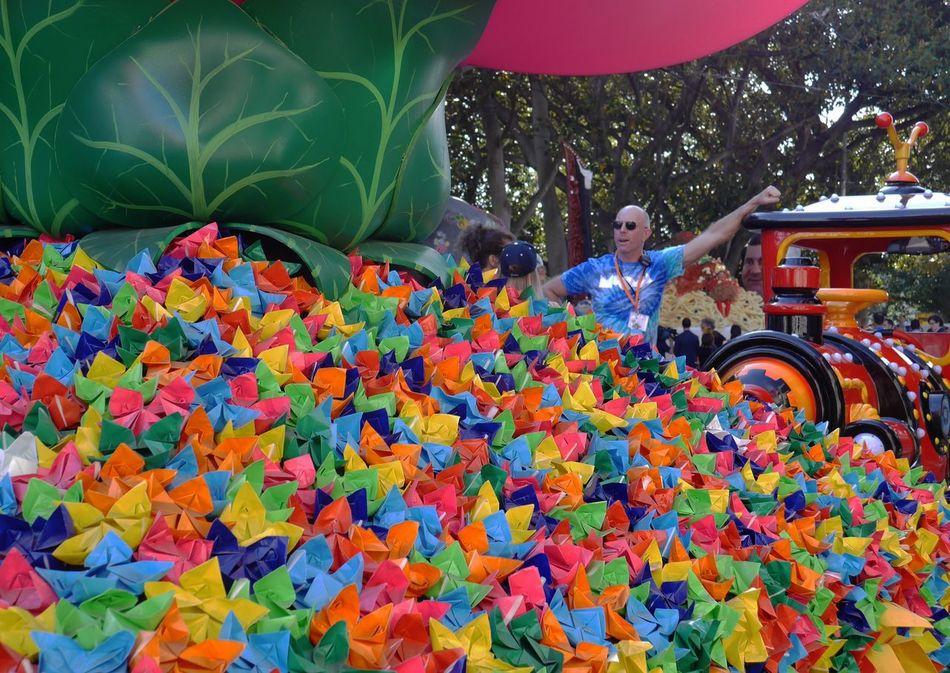 One Person Flower Day One Man Only Festival Season Festival Summer Memories 🌄 Australia Streetphotography Streetphotography Street Photography Paperflowers Colours