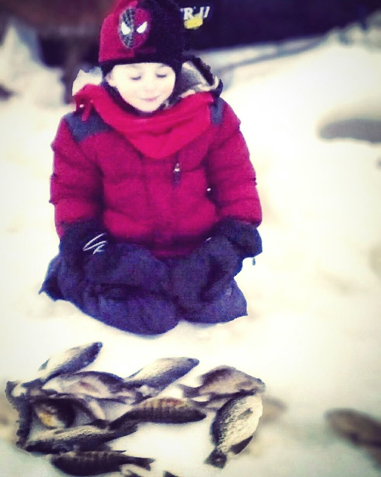 Child Winter Warm Clothing Cold Cold Temperature Catching Fish Ice Fishing Family Time Grandson Yaya Time One Boy One Boy Only Children Only Childhood One Person Outdoors Day Snow Fishing Boy My Photography BoysBoysBoys Boys Nature Photography Fishing Time