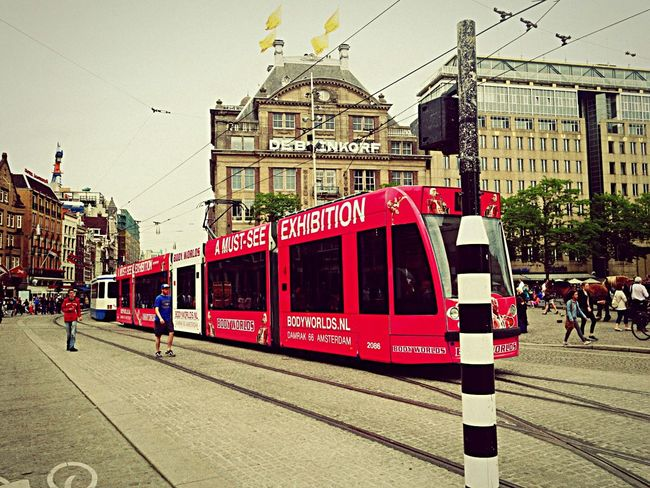 Bus Check This Out Cheese! Hello World Streetphotography Amsterdam Enjoying Life Hanging Out Love Vacation Time