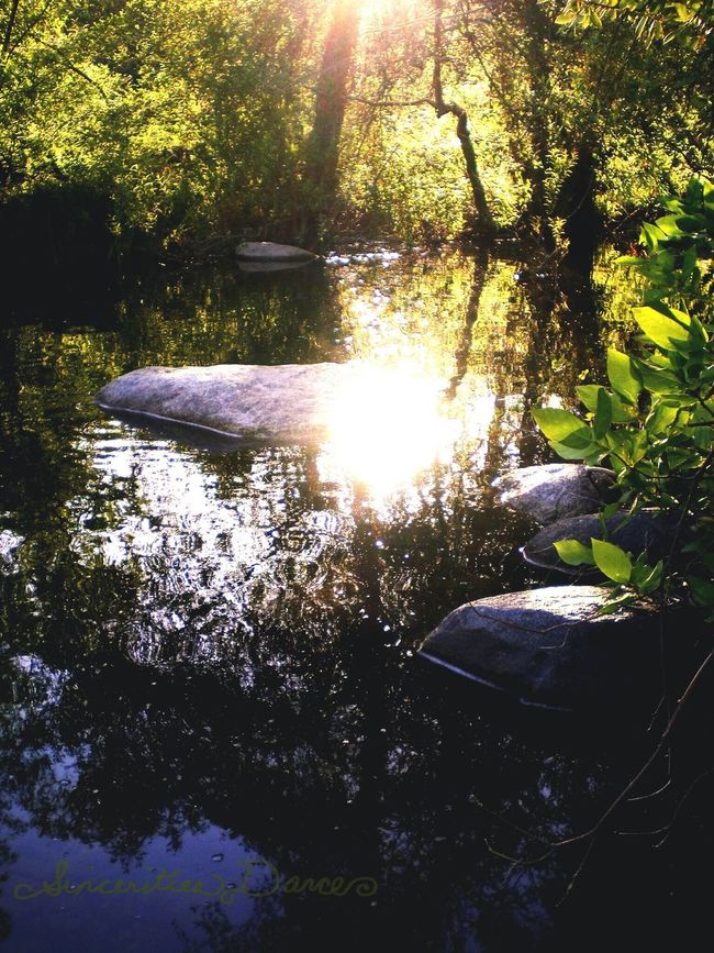 Enjoying Life By The River California Landscape Landscape_collection River Collection Water_collection Older Pic Rocks EyeEm Nature Lover just outside Sequoia National Park Light And Shadow