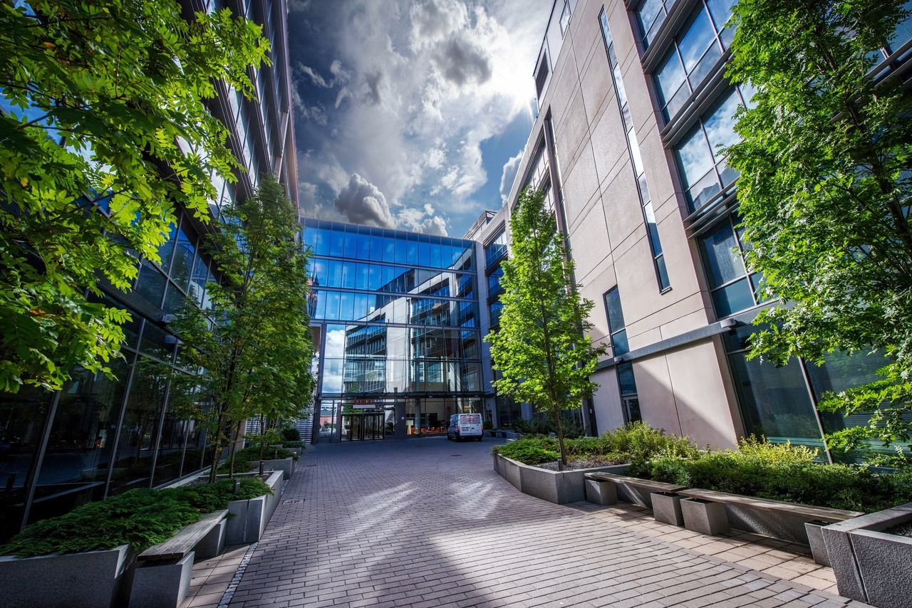 Architecture Built Structure Building Exterior Empty Walkway Tree Pathway Long Plant Narrow Modern Sky Day Office Building Diminishing Perspective Cloud - Sky Outdoors Footpath Vanishing Point