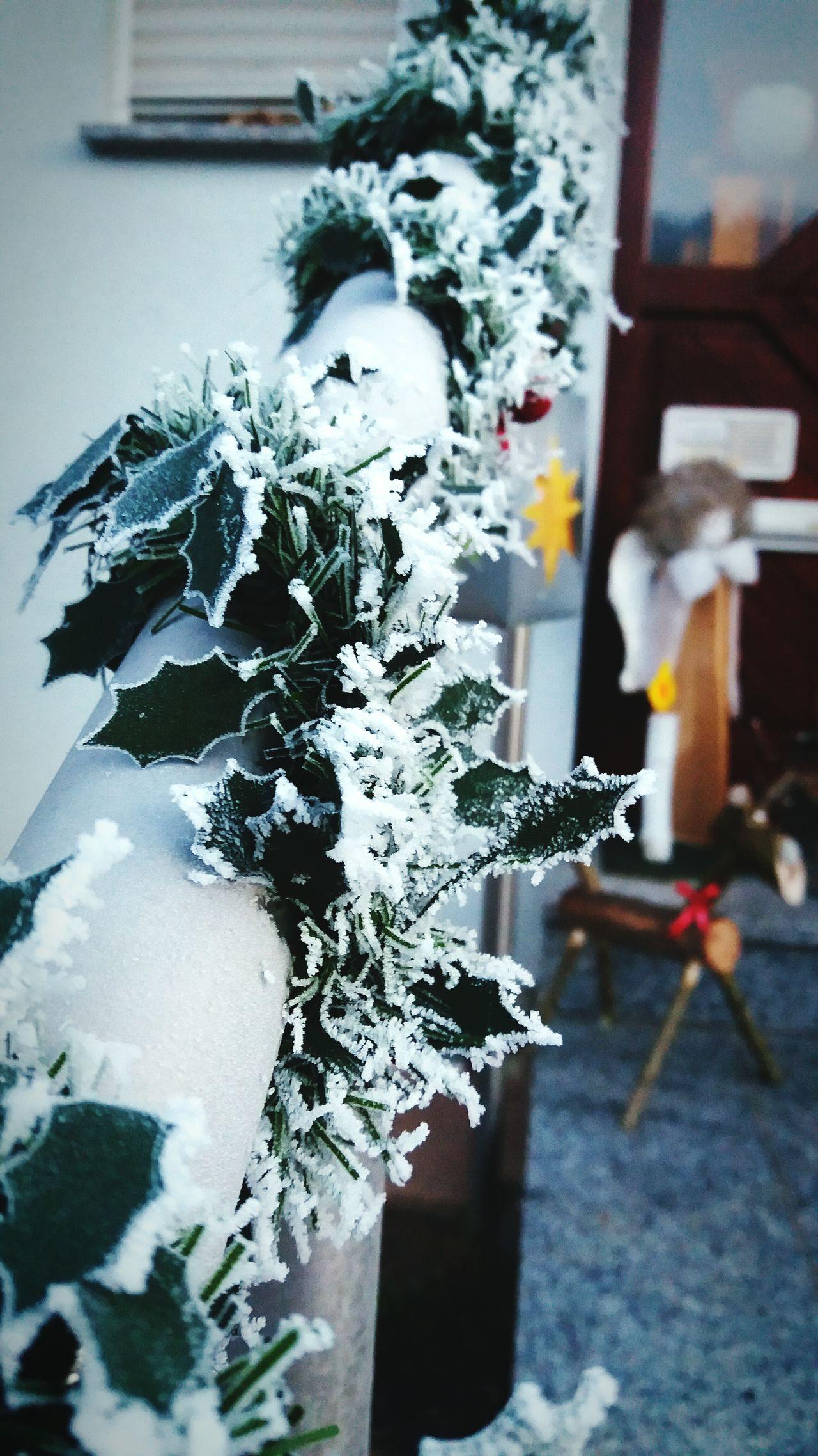 Mein Treppengeländer, bei - 12° Celsius Chrismastime Decoration Winter Morning