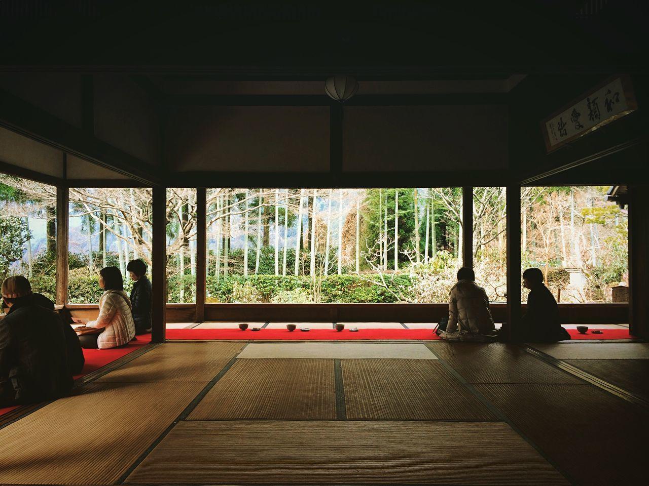 宝泉院 大原 京都 Kyoto Kyoto, Japan Kyoto Garden Japanese Garden Travel Destinations 3XSPUnity Beauty In Nature Enjoying Life Hello World Relaxing
