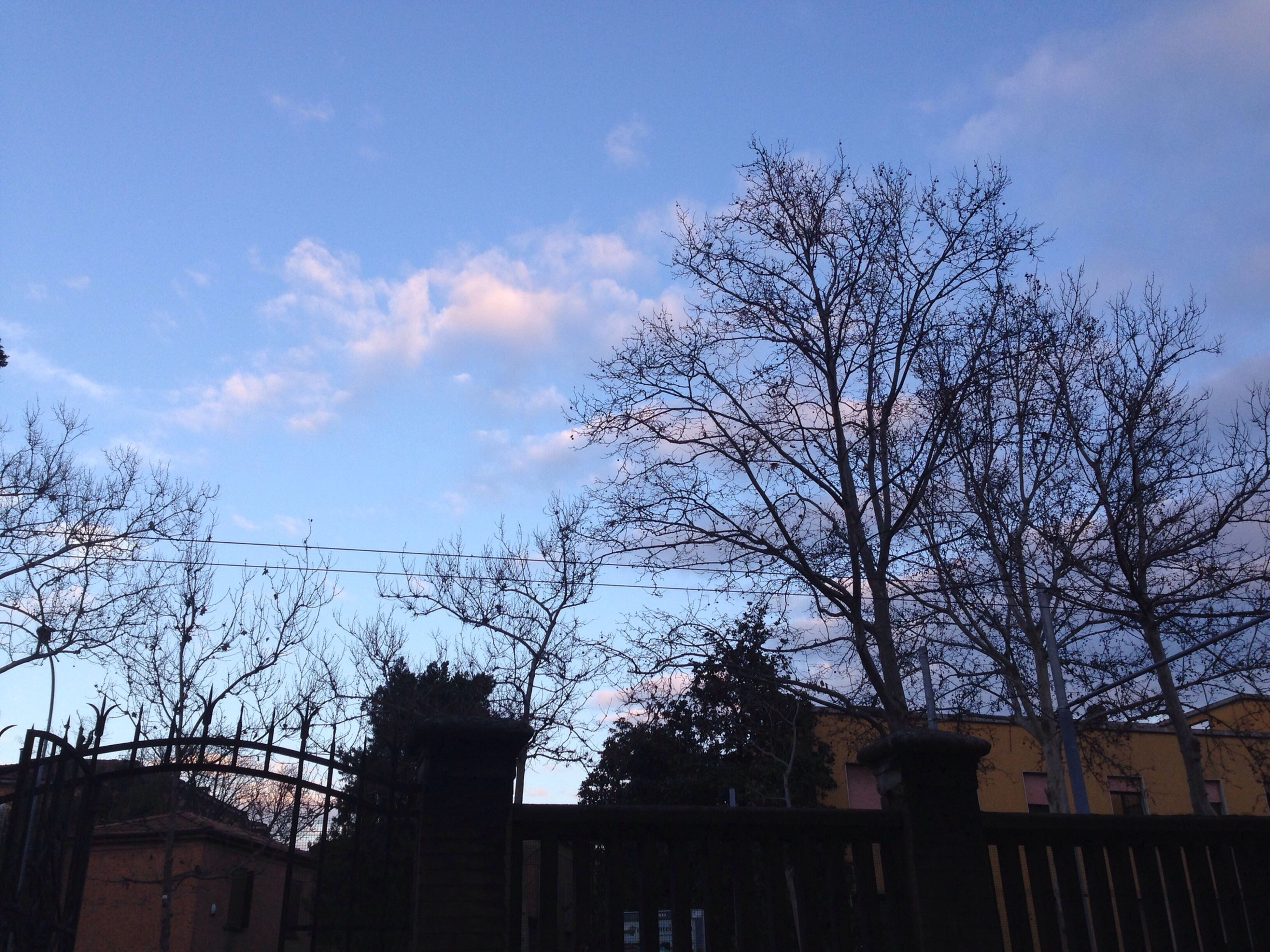building exterior, low angle view, built structure, architecture, bare tree, tree, sky, branch, silhouette, house, blue, cloud - sky, residential structure, cloud, residential building, outdoors, nature, no people, building, high section