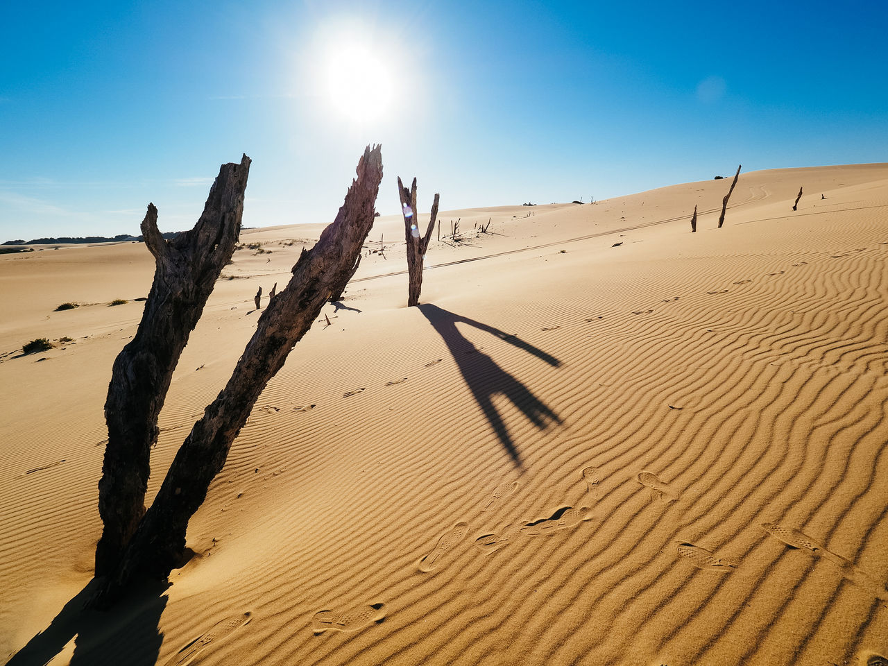 Arid Arid Climate Beach Beauty In Nature Day Desert Empty Epic Isolated Landscape Lonely Nature No People Outdoors Sand Sand Dune Sky Sun Sunlight Vast