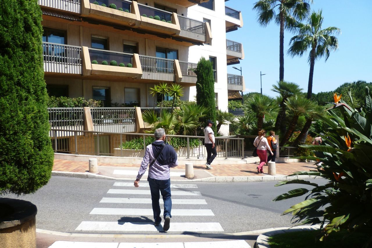 Monaco Street Street Photography Walking Tree Building Exterior City Outdoors Adult Architecture Monte Carlo Man Road Apartments Relaxing Sky Sun Green Color