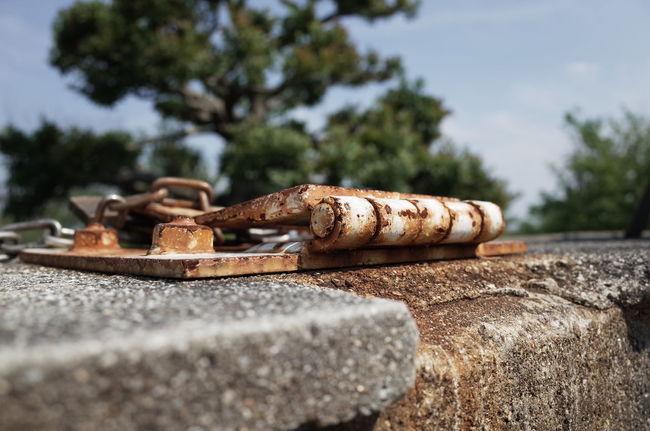 Rust Rusty Rustygoodness Take Photos サビ 錆び太くん