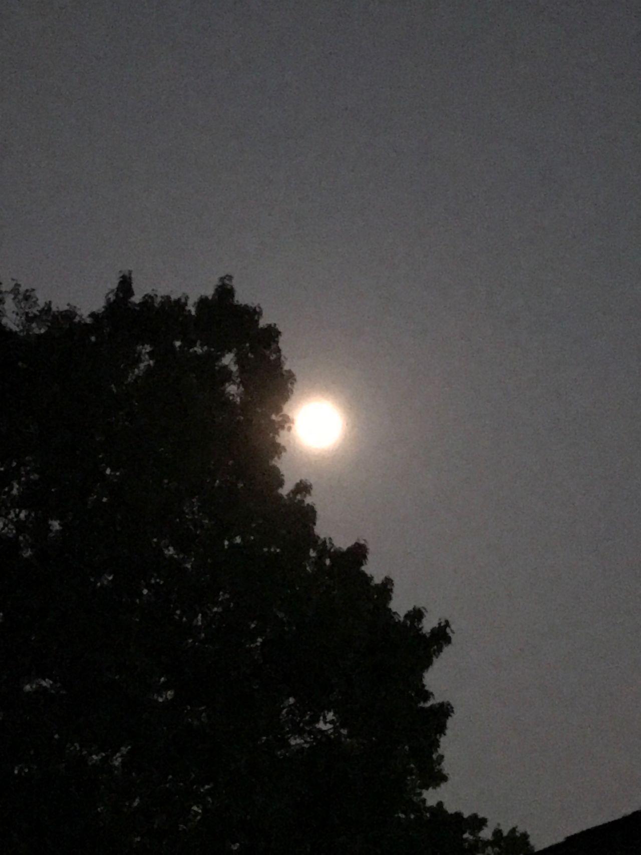 Super Moon Supermoon Supermoon2016 Full Moon Bright_and_bold Bright Night Moonlight Beauty Of The Night Beauty Of The Sky Night Sky Full Moon Night