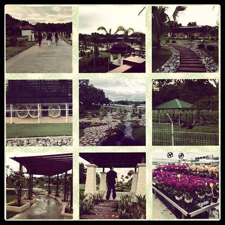 Agro Park?! Simply Amazing Sakai Ostrich Animals Orchard amazing park Brunei