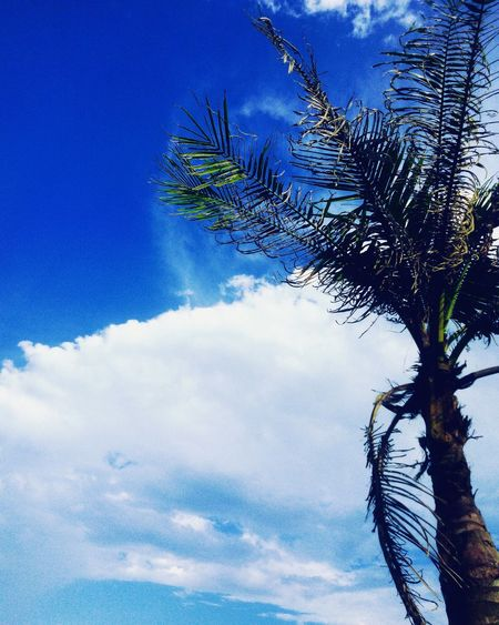 Samsonbeach Blue Sky Meonthebeach Enjoytime Sunday Loveit Beautiful Nice View Awesome 😙