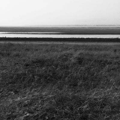 Blackandwhite Minimal Lines&Design Nature_collection Guevorkaivazian Photography Artphoto_bw Enjoying Life