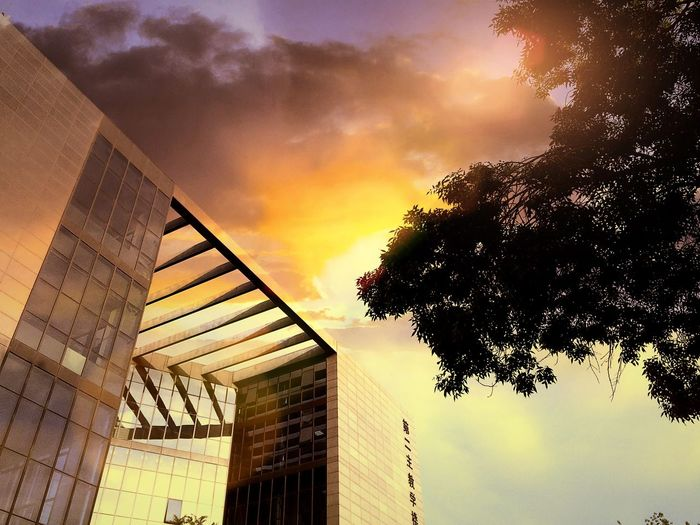 Photography Architecture IPhoneography IPhone Landscape 南开大学