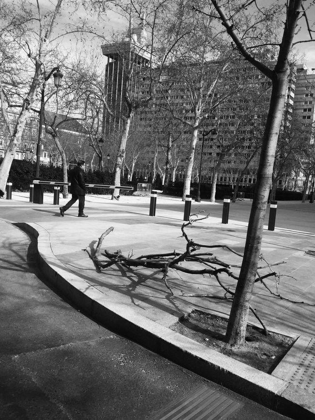 Streetphotography_bw Streetphotography Contrast Street Blancoynegro Blackandwhite Madrid Streetphoto_bw Monochrome NEM Black&white Street Life AMPt - Street Flaneur