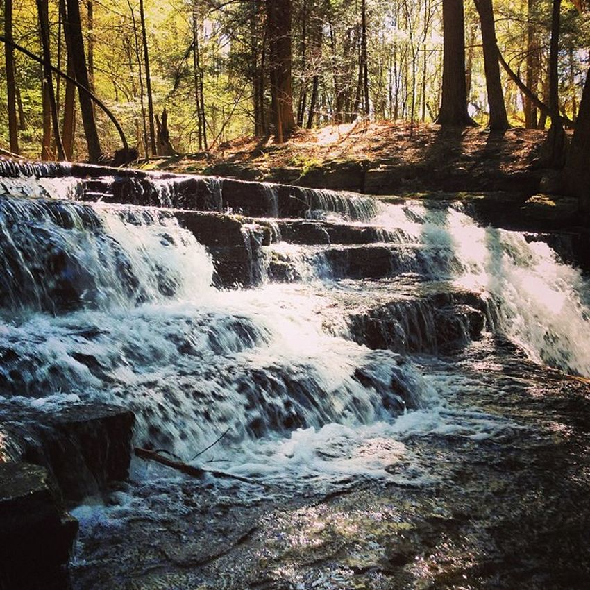 Saltsprings Crazyworldoutthere Waterfalls