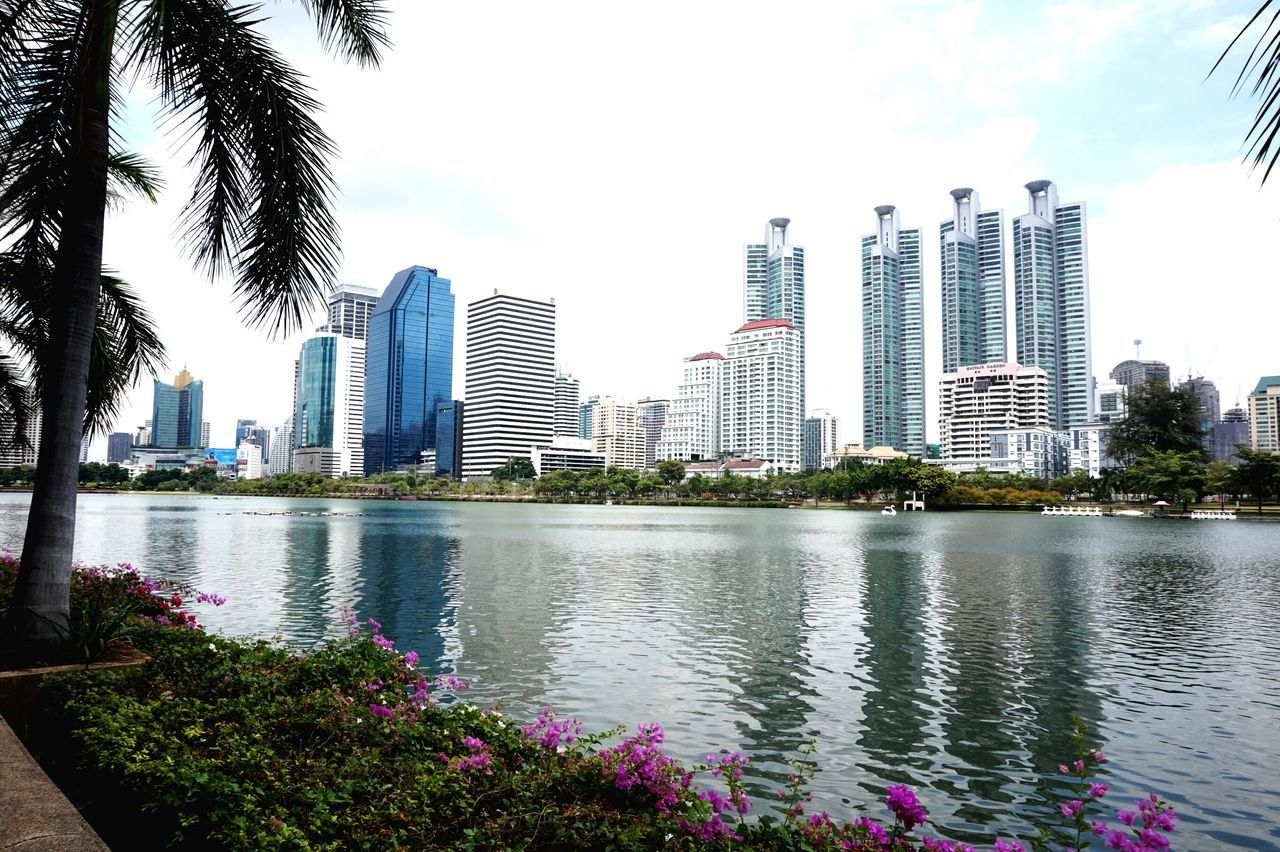 skyscraper, architecture, building exterior, city, tall - high, built structure, modern, tree, tower, growth, cityscape, downtown district, urban skyline, financial district, outdoors, no people, sky, day, water, tall, travel destinations, nature