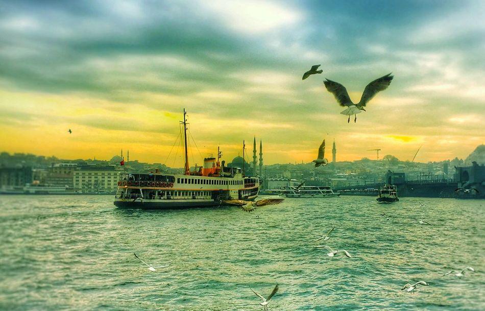 Istanbul Turkey Vapur Ve İstanbul Haliç